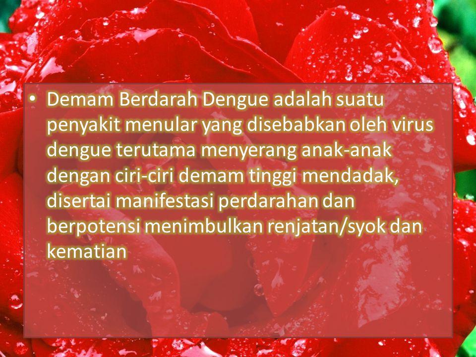 ETIOLOGI Demam dengue dan Demam berdarah dengue disebabkan oleh virus dengue, yang termasuk dalam group arboviruses (virus yang ditularkan melalui gigitan nyamuk asthropod) dan dalam genus flavivirus, keluarga flaviviridae.