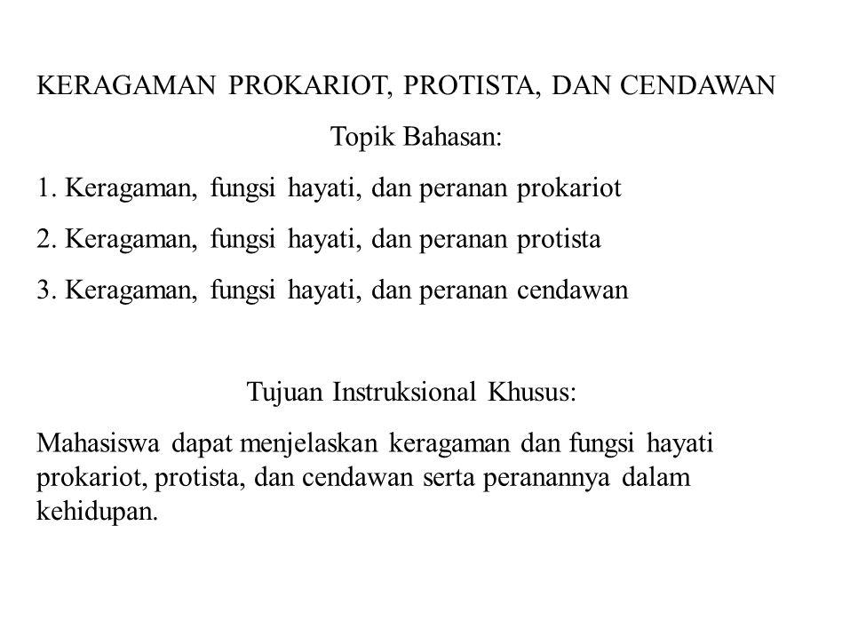 KERAGAMAN PROKARIOT, PROTISTA, DAN CENDAWAN Topik Bahasan: 1. Keragaman, fungsi hayati, dan peranan prokariot 2. Keragaman, fungsi hayati, dan peranan