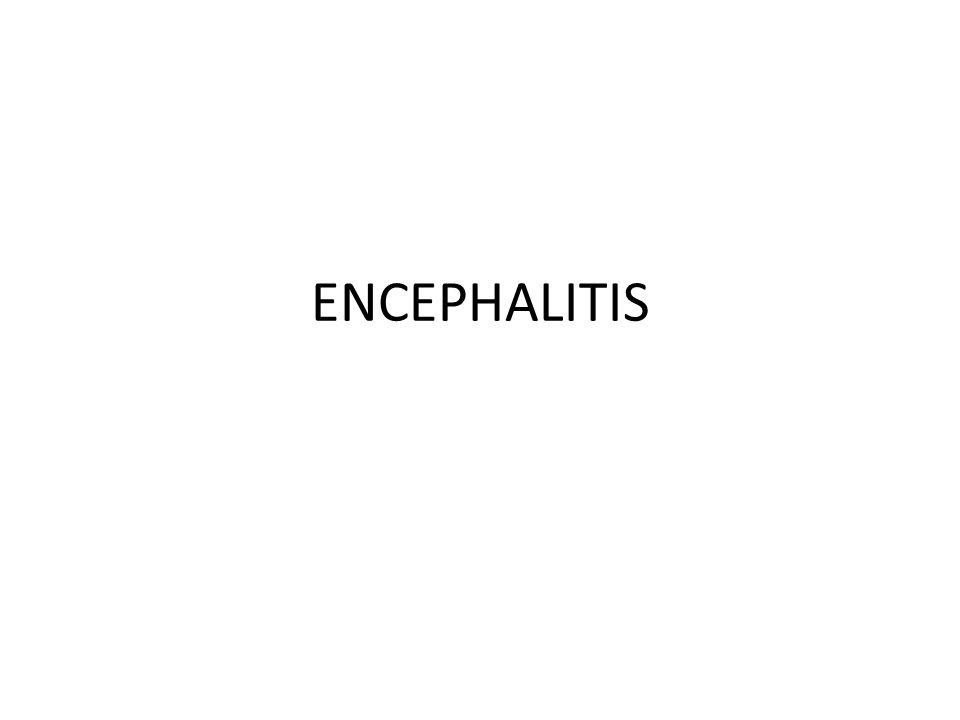 Definisi Encephalitis Encephalitis adalah suatu peradangan dari otak.