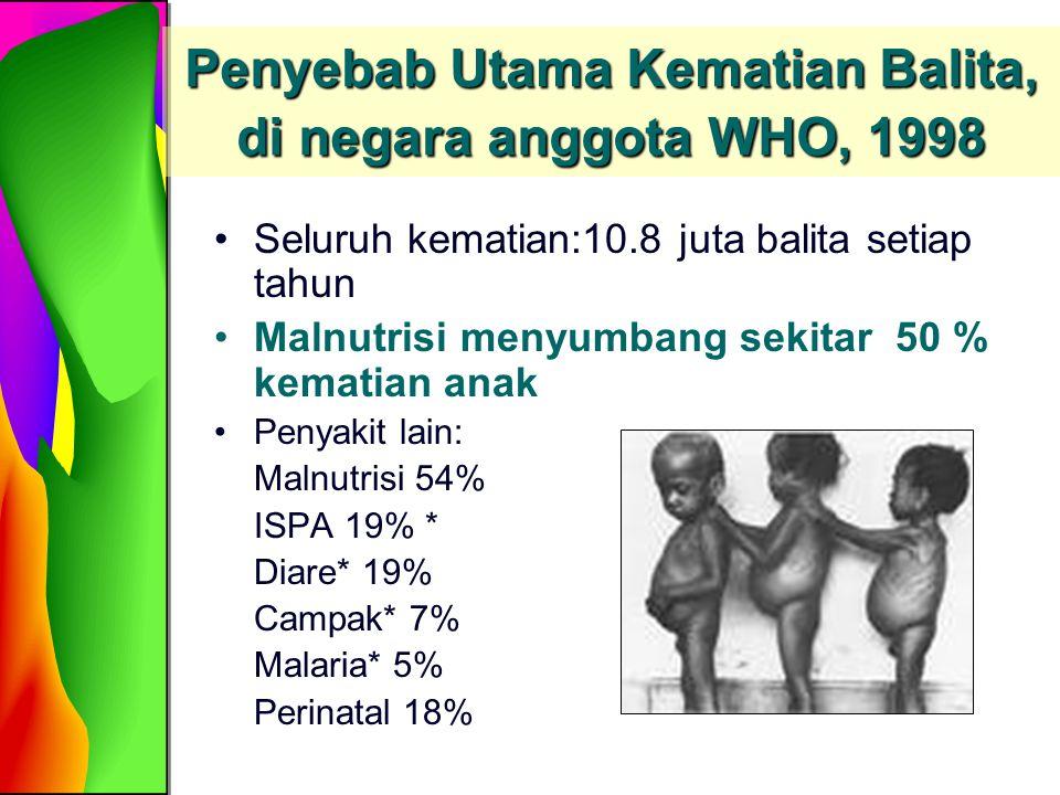 Penyebab Utama Kematian Balita, di negara anggota WHO, 1998 Seluruh kematian:10.8 juta balita setiap tahun Malnutrisi menyumbang sekitar 50 % kematian