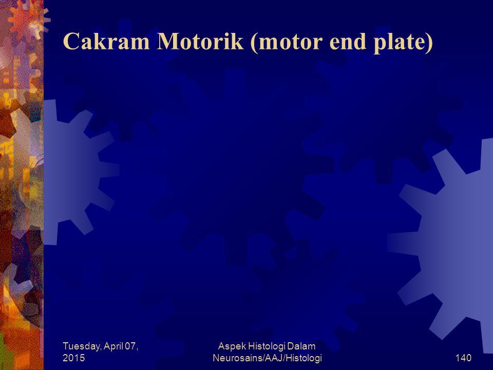 Tuesday, April 07, 2015 Aspek Histologi Dalam Neurosains/AAJ/Histologi140 Cakram Motorik (motor end plate)