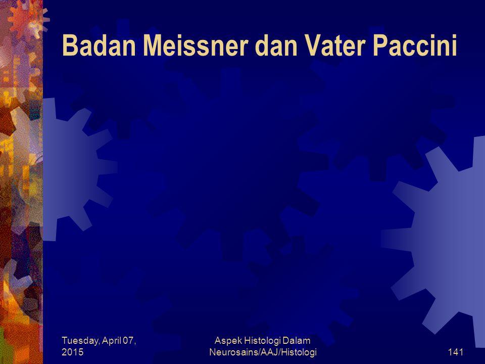 Tuesday, April 07, 2015 Aspek Histologi Dalam Neurosains/AAJ/Histologi141 Badan Meissner dan Vater Paccini