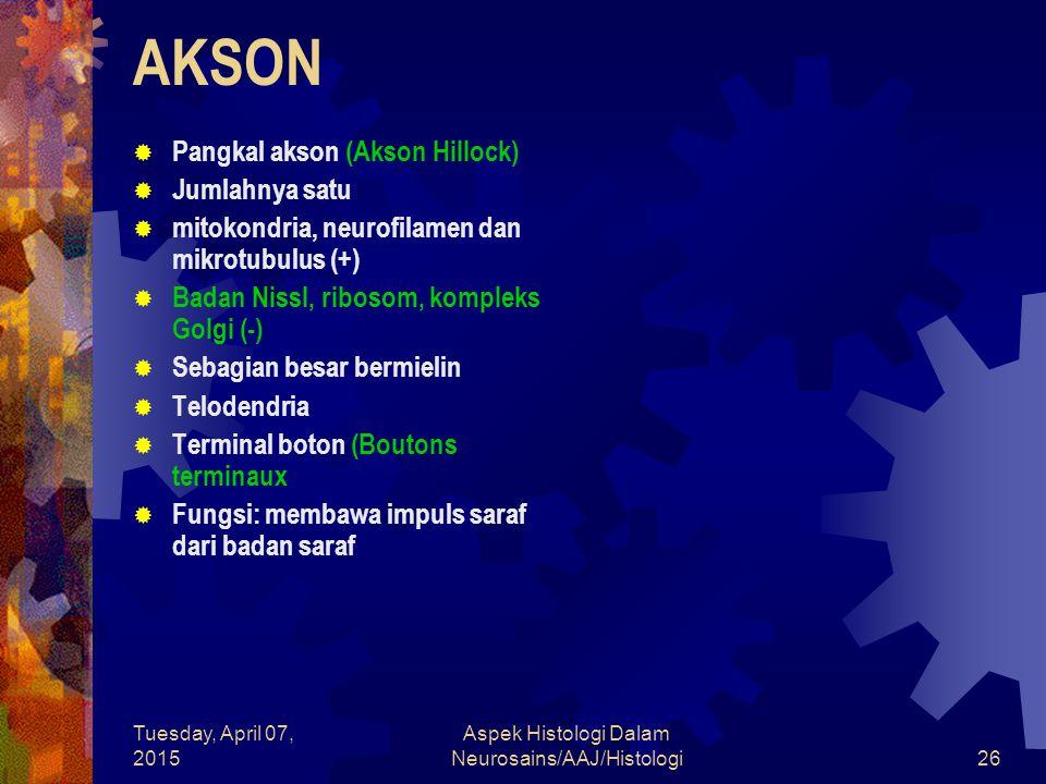 Tuesday, April 07, 2015 Aspek Histologi Dalam Neurosains/AAJ/Histologi26 AKSON  Pangkal akson (Akson Hillock)  Jumlahnya satu  mitokondria, neurofi