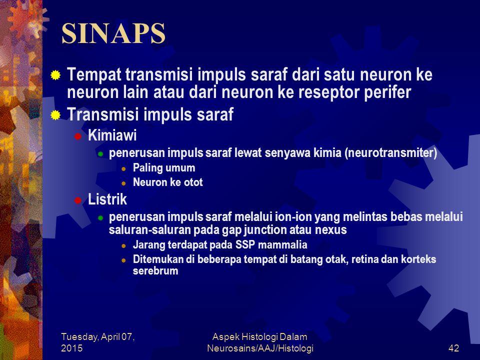 Tuesday, April 07, 2015 Aspek Histologi Dalam Neurosains/AAJ/Histologi42 SINAPS  Tempat transmisi impuls saraf dari satu neuron ke neuron lain atau d