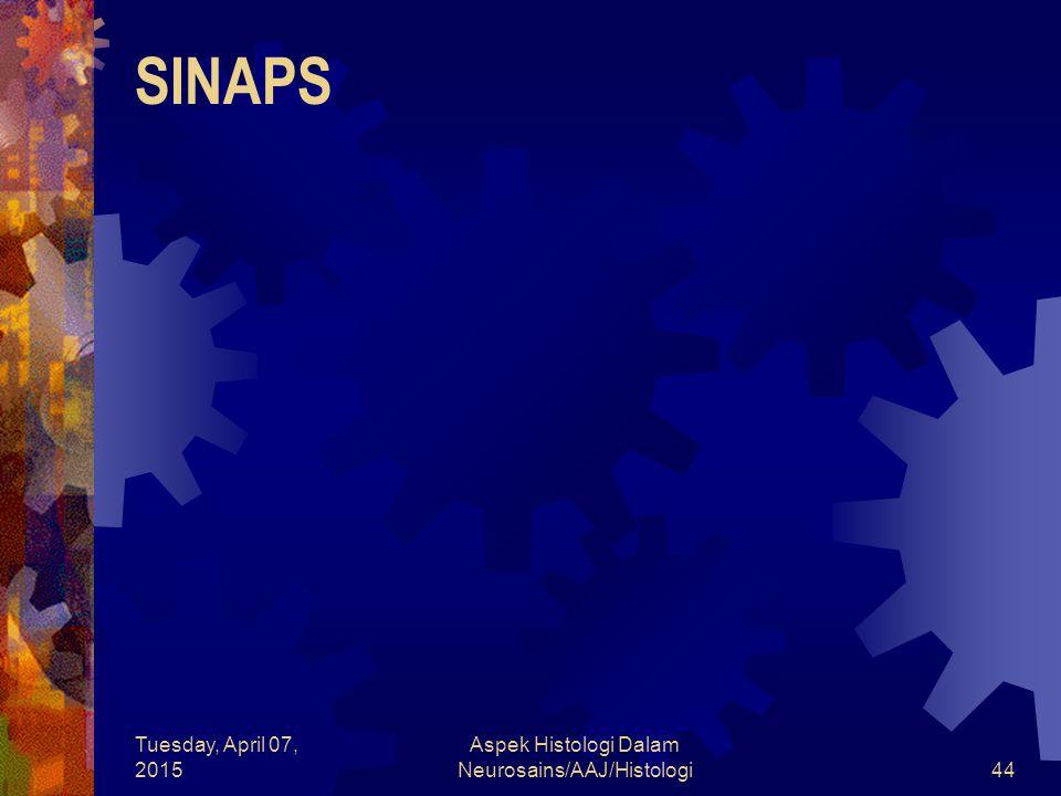 Tuesday, April 07, 2015 Aspek Histologi Dalam Neurosains/AAJ/Histologi44 SINAPS