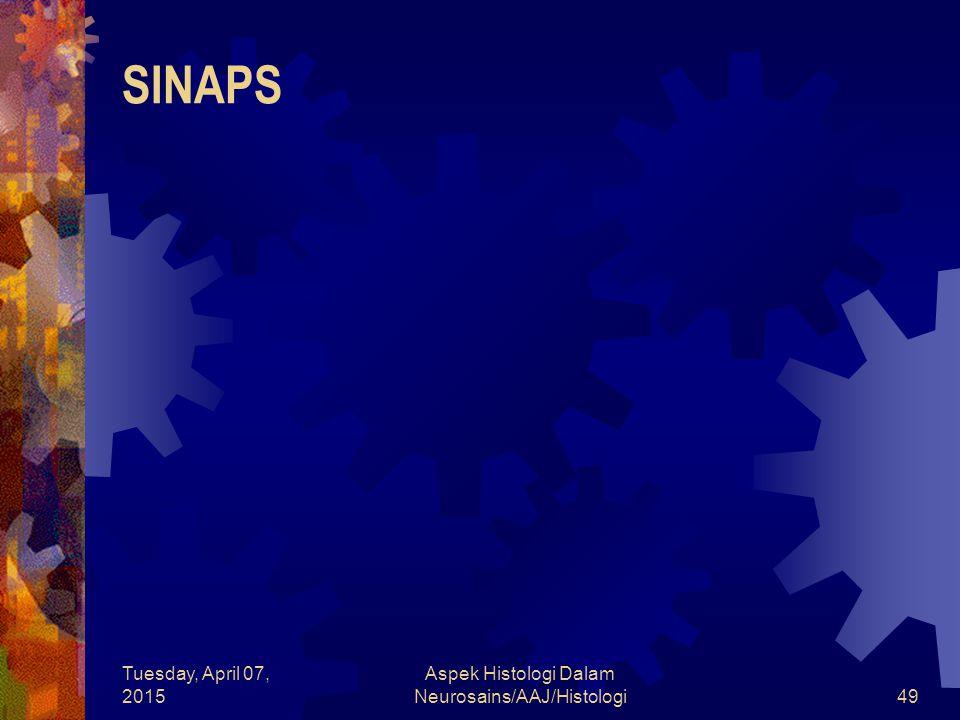 Tuesday, April 07, 2015 Aspek Histologi Dalam Neurosains/AAJ/Histologi49 SINAPS