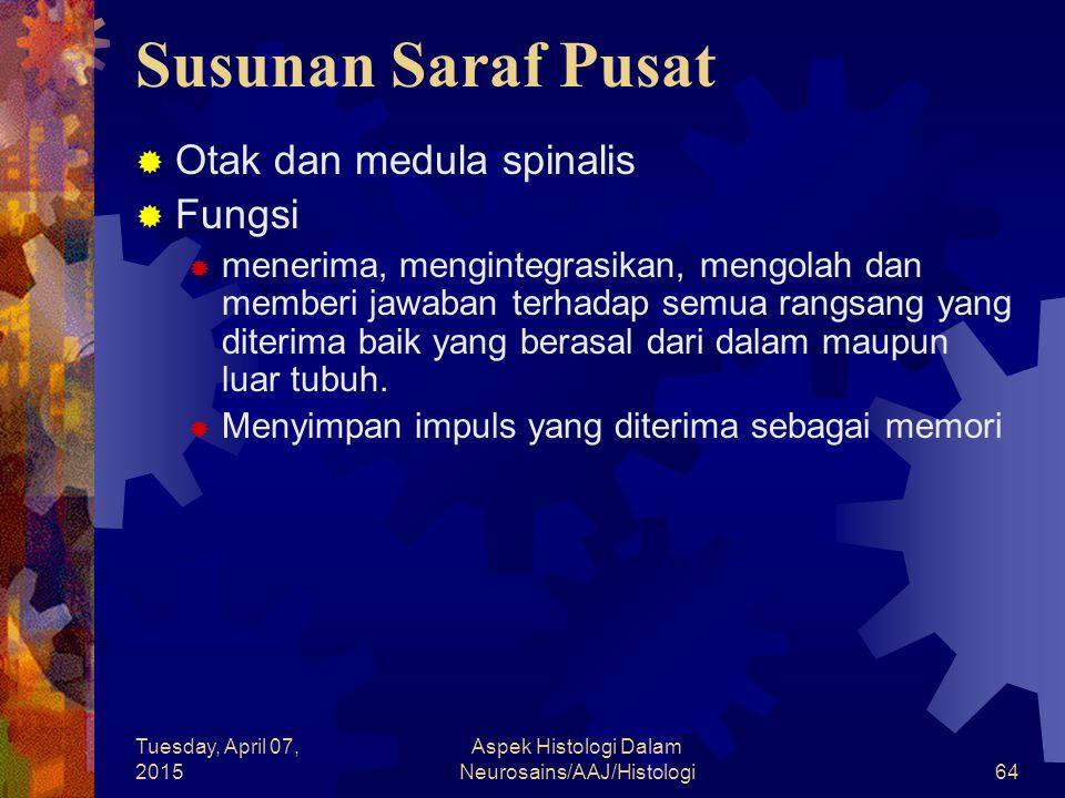 Tuesday, April 07, 2015 Aspek Histologi Dalam Neurosains/AAJ/Histologi64 Susunan Saraf Pusat  Otak dan medula spinalis  Fungsi  menerima, menginteg