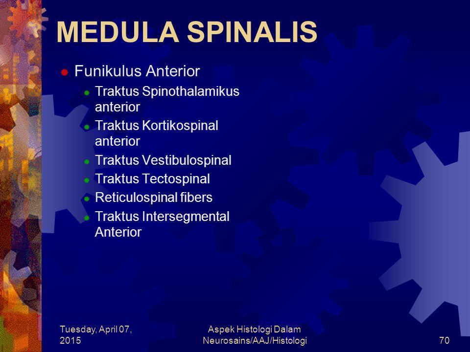 Tuesday, April 07, 2015 Aspek Histologi Dalam Neurosains/AAJ/Histologi70 MEDULA SPINALIS  Funikulus Anterior  Traktus Spinothalamikus anterior  Tra