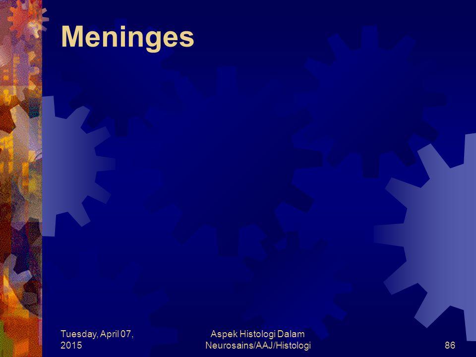 Tuesday, April 07, 2015 Aspek Histologi Dalam Neurosains/AAJ/Histologi86 Meninges