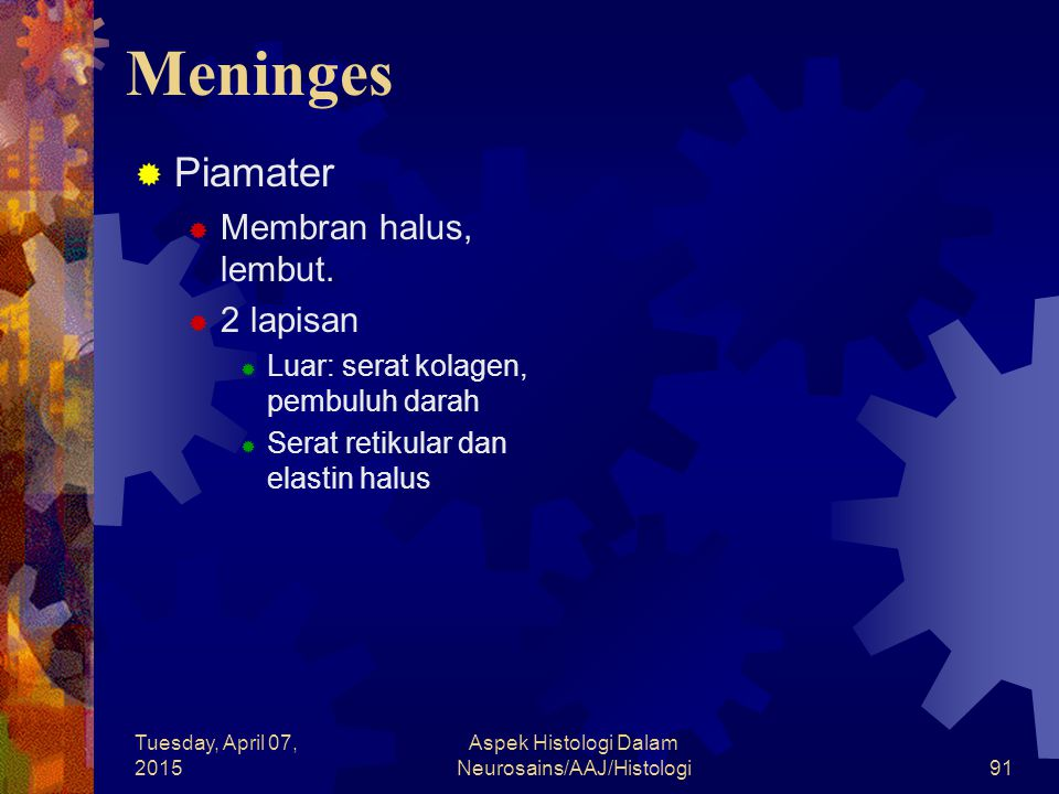 Tuesday, April 07, 2015 Aspek Histologi Dalam Neurosains/AAJ/Histologi91 Meninges  Piamater  Membran halus, lembut.  2 lapisan  Luar: serat kolage