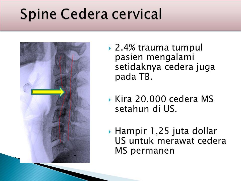 Spine Cedera cervical Spine Cedera cervical  2.4% trauma tumpul pasien mengalami setidaknya cedera juga pada TB.  Kira 20.000 cedera MS setahun di U