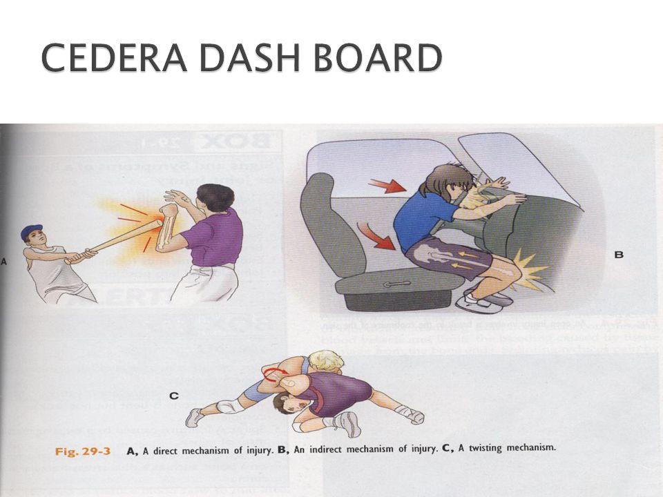 CEDERA DASH BOARD