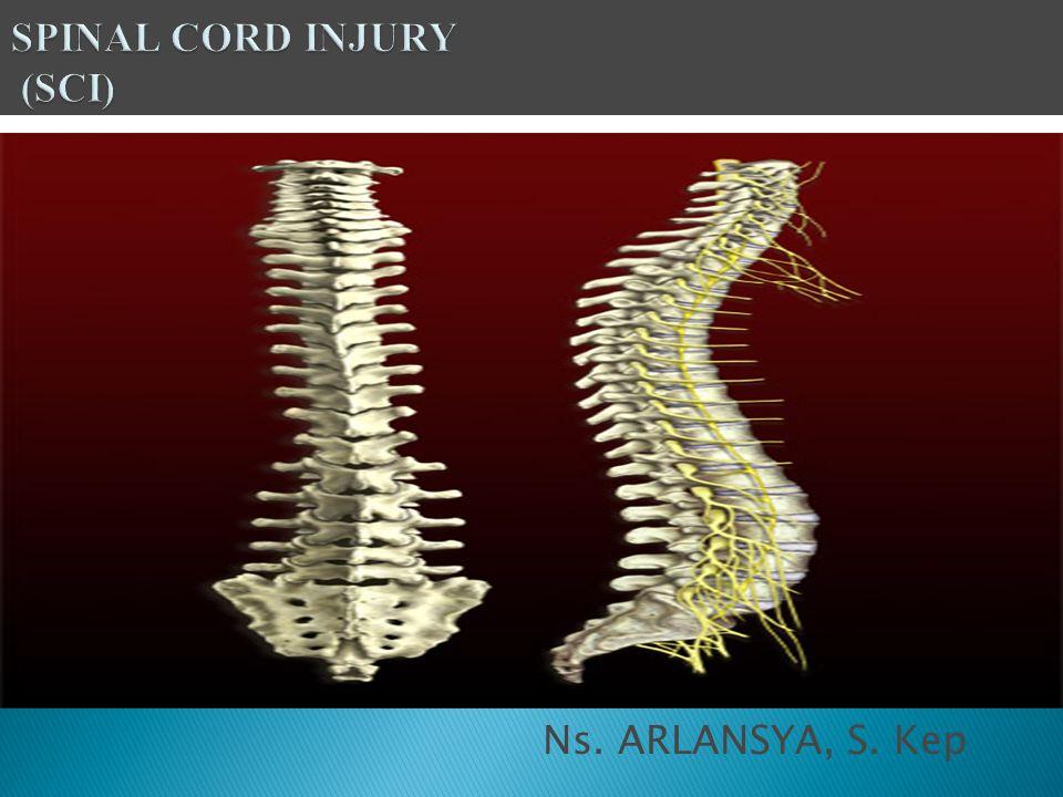 Lanjut...6. Refleks tendon dan aktivitas refleks perianal abnormal 7.