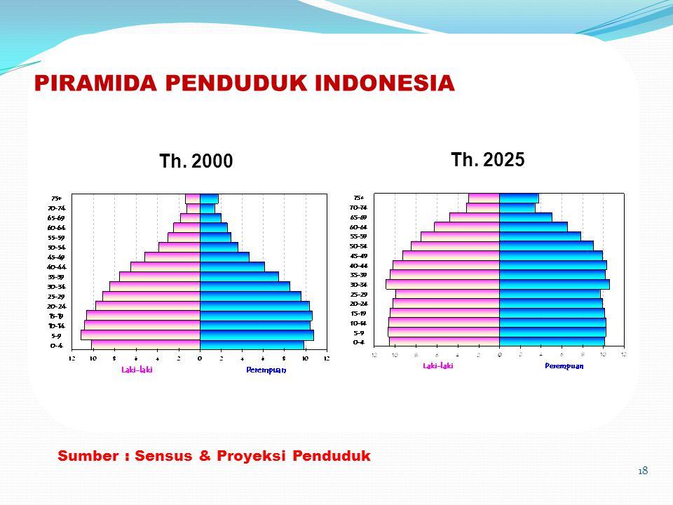 PIRAMIDA PENDUDUK INDONESIA 18 Sumber : Sensus & Proyeksi Penduduk Th. 2000 Th. 2025