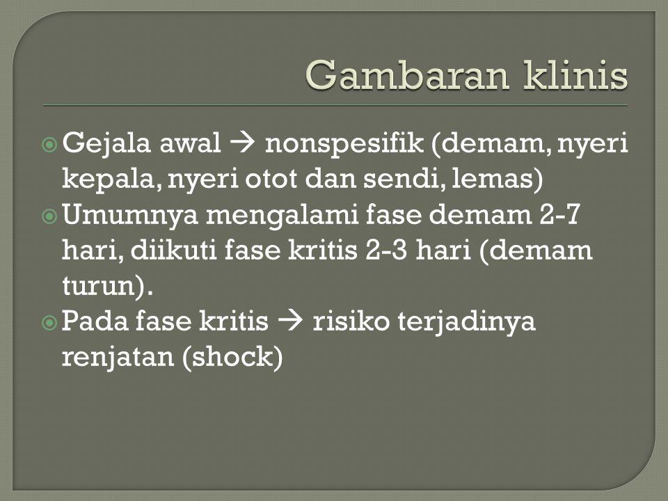  Gejala awal  nonspesifik (demam, nyeri kepala, nyeri otot dan sendi, lemas)  Umumnya mengalami fase demam 2-7 hari, diikuti fase kritis 2-3 hari (