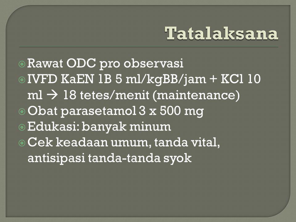 Rawat ODC pro observasi  IVFD KaEN 1B 5 ml/kgBB/jam + KCl 10 ml  18 tetes/menit (maintenance)  Obat parasetamol 3 x 500 mg  Edukasi: banyak minu