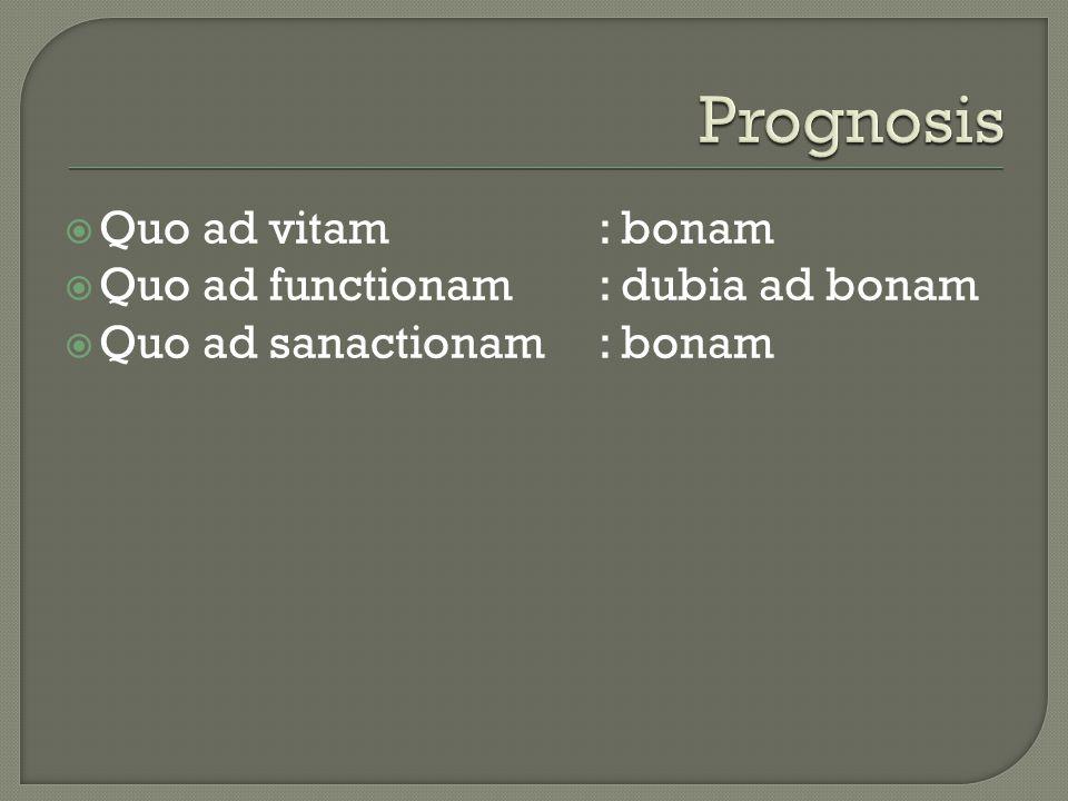  Quo ad vitam: bonam  Quo ad functionam: dubia ad bonam  Quo ad sanactionam: bonam