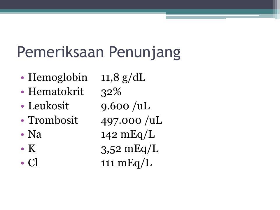 Pemeriksaan Penunjang Hemoglobin 11,8 g/dL Hematokrit32% Leukosit9.600 /uL Trombosit497.000 /uL Na 142 mEq/L K 3,52 mEq/L Cl 111 mEq/L