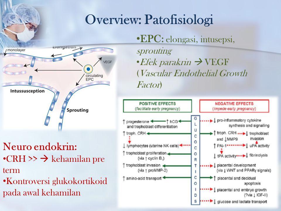 Overview: Patofisiologi EPC: elongasi, intusepsi, sprouting Efek parakrin  VEGF (Vascular Endothelial Growth Factor) Neuro endokrin: CRH >>  kehamil