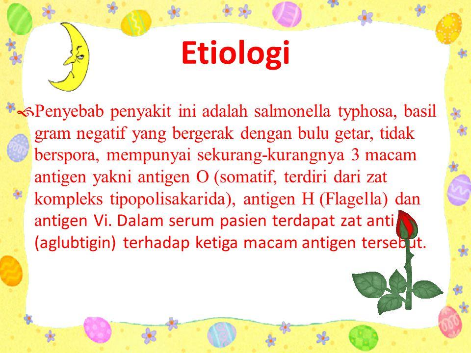 Etiologi  Penyebab penyakit ini adalah salmonella typhosa, basil gram negatif yang bergerak dengan bulu getar, tidak berspora, mempunyai sekurang-kurangnya 3 macam antigen yakni antigen O (somatif, terdiri dari zat kompleks tipopolisakarida), antigen H (Flagella) dan a ntigen Vi.