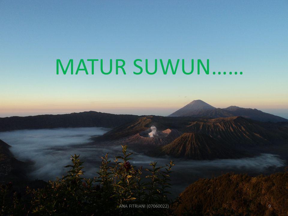 MATUR SUWUN…… ANA FITRIANI (07060022)9