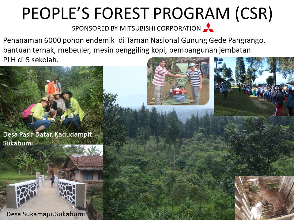 PEOPLE'S FOREST PROGRAM (CSR) SPONSORED BY MITSUBISHI CORPORATION Penanaman 6000 pohon endemik di Taman Nasional Gunung Gede Pangrango, bantuan ternak