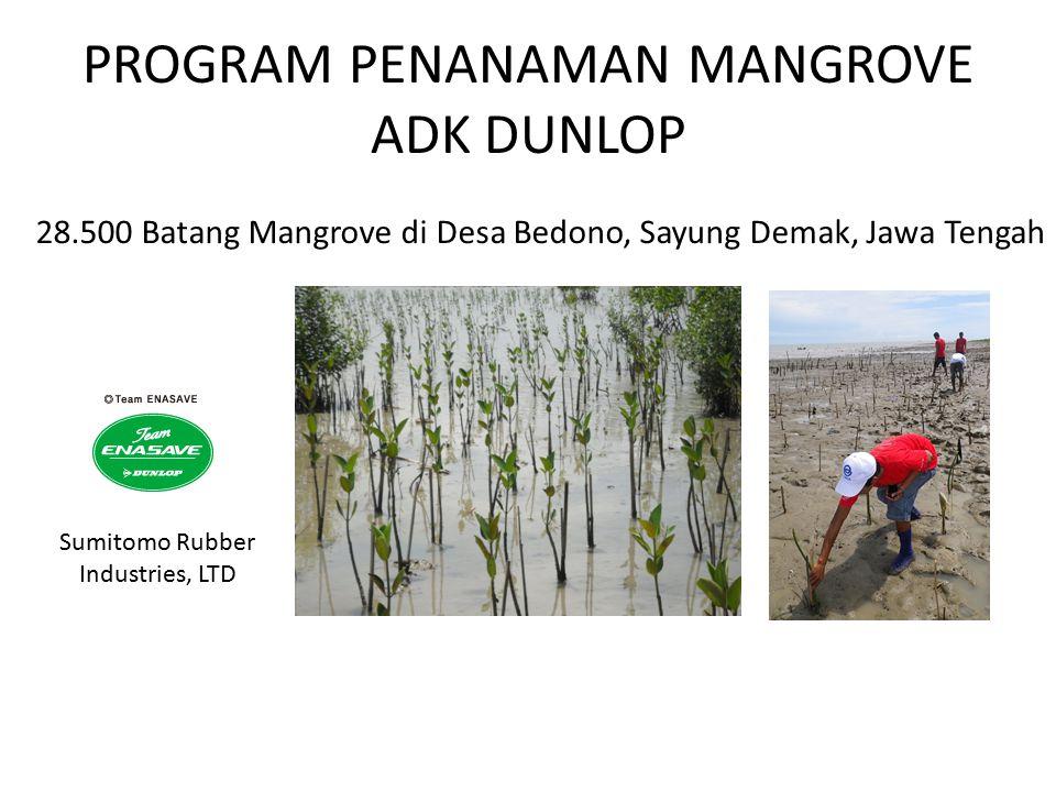 PROGRAM PENANAMAN MANGROVE ADK DUNLOP 28.500 Batang Mangrove di Desa Bedono, Sayung Demak, Jawa Tengah Sumitomo Rubber Industries, LTD