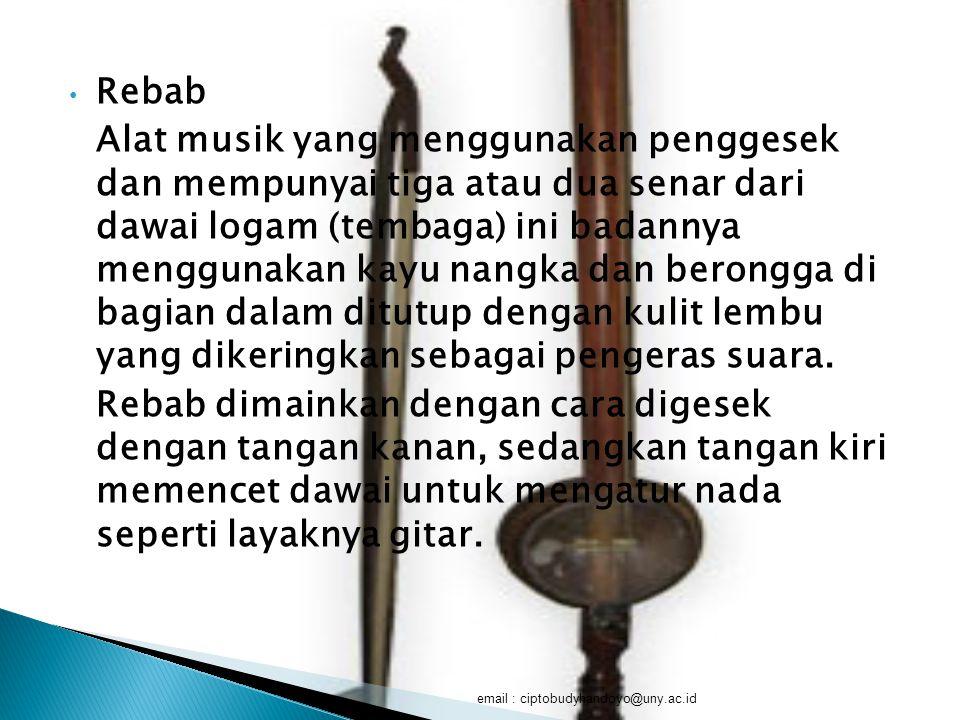 Rebab Alat musik yang menggunakan penggesek dan mempunyai tiga atau dua senar dari dawai logam (tembaga) ini badannya menggunakan kayu nangka dan bero