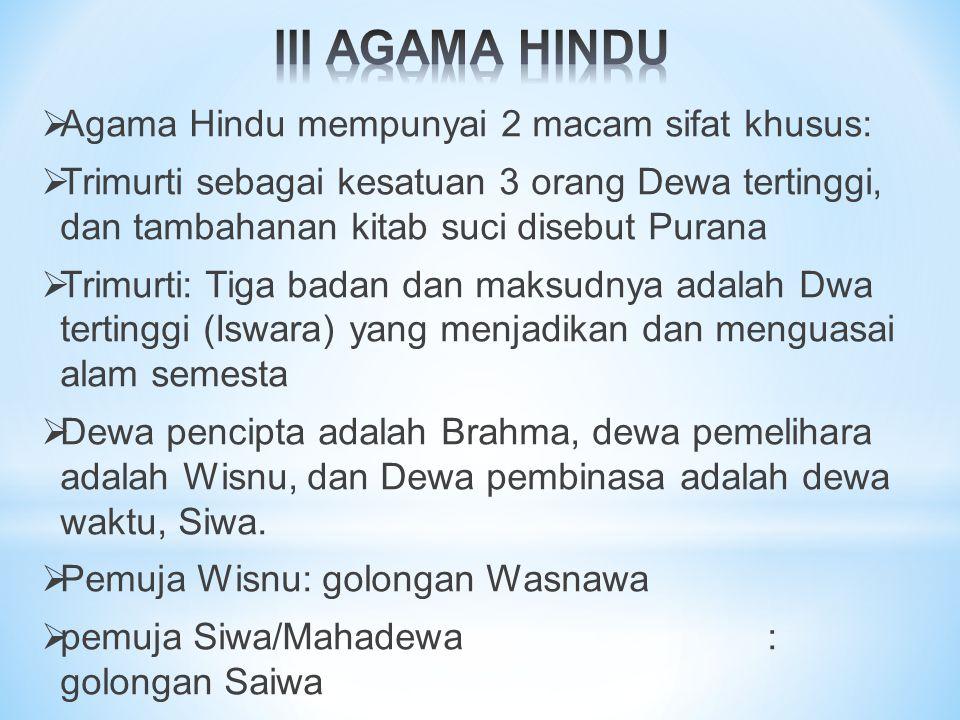  Agama Hindu mempunyai 2 macam sifat khusus:  Trimurti sebagai kesatuan 3 orang Dewa tertinggi, dan tambahanan kitab suci disebut Purana  Trimurti: