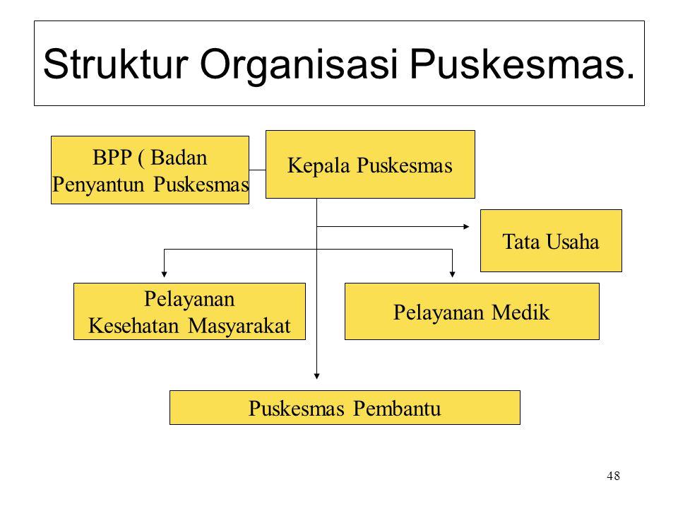48 Struktur Organisasi Puskesmas. Kepala Puskesmas BPP ( Badan Penyantun Puskesmas Tata Usaha Pelayanan Kesehatan Masyarakat Pelayanan Medik Puskesmas