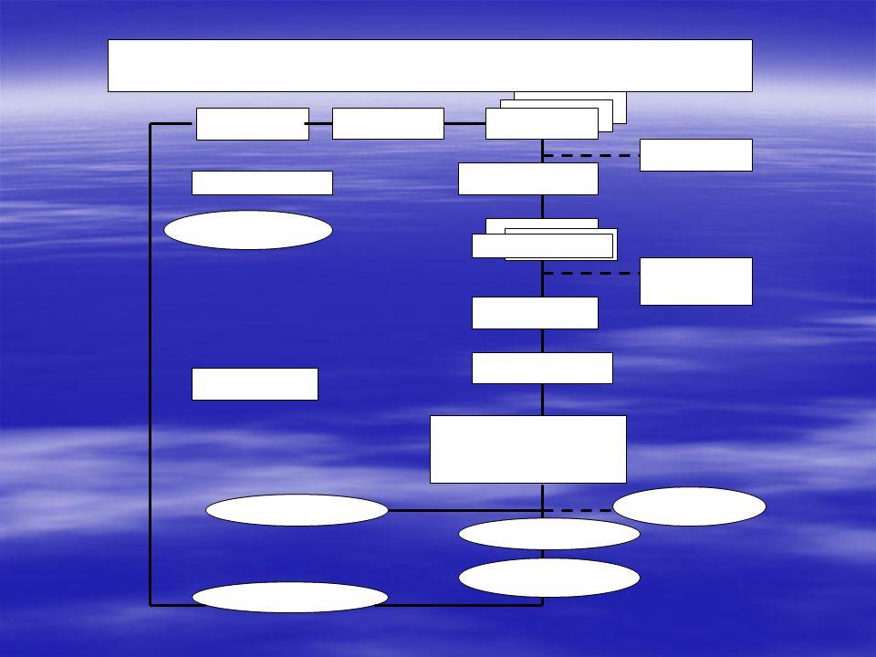 BENTUK ORGANISASI  Struktur organisasi adalah suatu gambar yang menggambarkan bentuk organisasi, pedepartemenan organisasi, kedudukan dan jenis wewenang pejabat, dan hubungan pekerjaan, garis perintah dan tanggung jawab, rentang kendali dan sistem rentang kendali dan sistem pimpinan kendali.