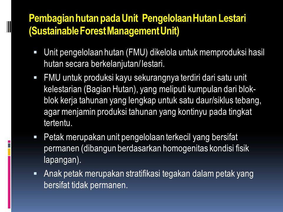 Pengorganisasian kawasan  Wilayah Pengelolaan Hutan :  Tingkat Provinsi  Tingkat Kabupaten/Kota  Tingkat Unit Pengelolaan (KPH)  Batas wilayah KP
