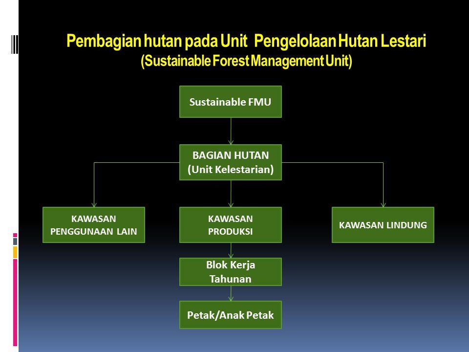 Pembagian hutan pada Unit Pengelolaan Hutan Lestari (Sustainable Forest Management Unit)  Unit pengelolaan hutan (FMU) dikelola untuk memproduksi has