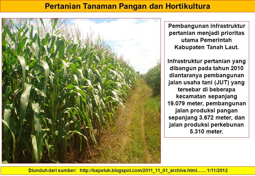 Pertanian Tanaman Pangan dan Hortikultura Diunduh dari sumber: http://bapeluh.blogspot.com/2011_11_01_archive.html…… 1/11/2012 Pembangunan infrastrukt