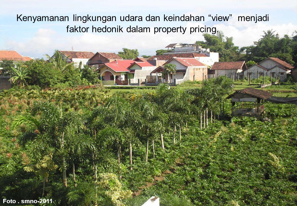 """Foto. smno-2011 Kenyamanan lingkungan udara dan keindahan """"view"""" menjadi faktor hedonik dalam property pricing."""