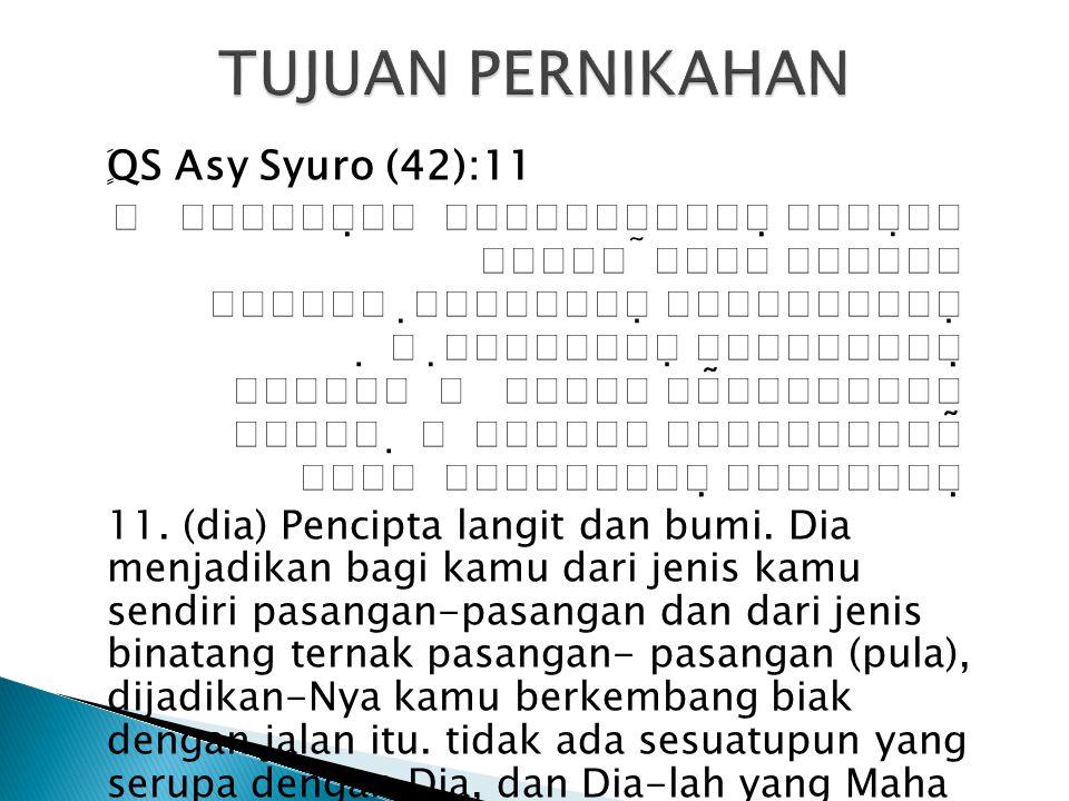 ٍَ QS Asy Syuro (42):11                