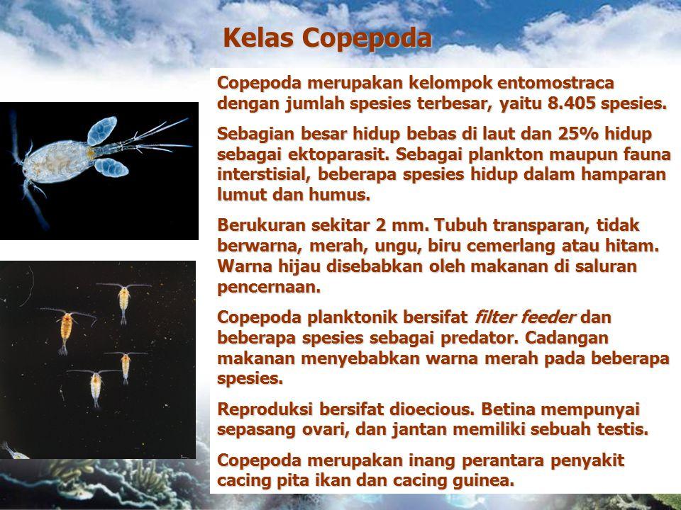 Kelas Copepoda Copepoda merupakan kelompok entomostraca dengan jumlah spesies terbesar, yaitu 8.405 spesies. Sebagian besar hidup bebas di laut dan 25