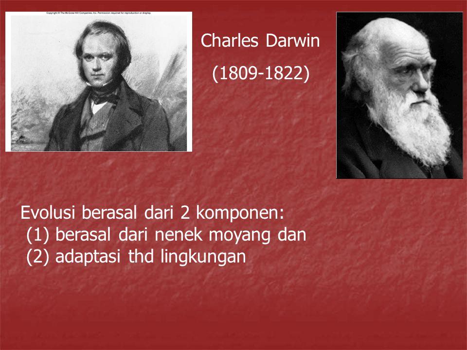 Charles Darwin (1809-1822) Evolusi berasal dari 2 komponen: (1) berasal dari nenek moyang dan (2) adaptasi thd lingkungan