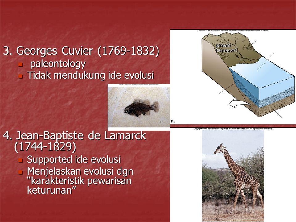 3. Georges Cuvier (1769-1832) paleontology paleontology Tidak mendukung ide evolusi Tidak mendukung ide evolusi 4. Jean-Baptiste de Lamarck (1744-1829