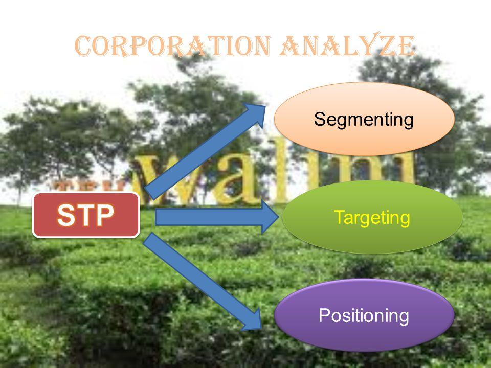 CORPORATION ANALYZE Segmenting Targeting Positioning