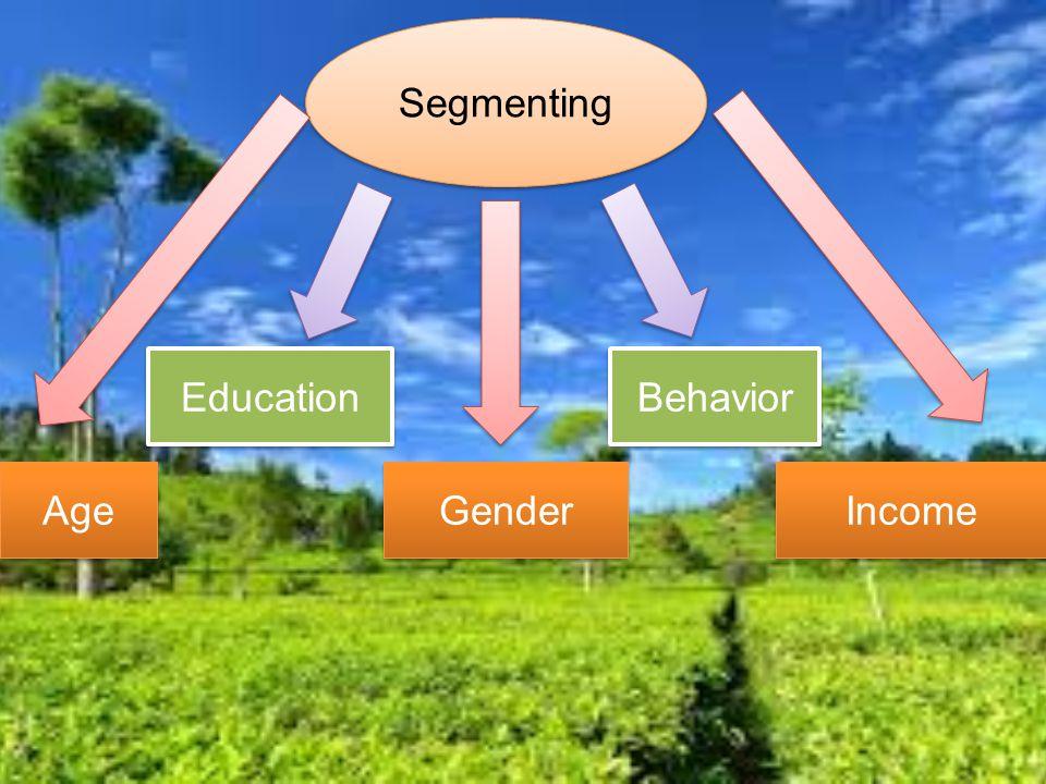Segmenting Age Education Gender Income Behavior