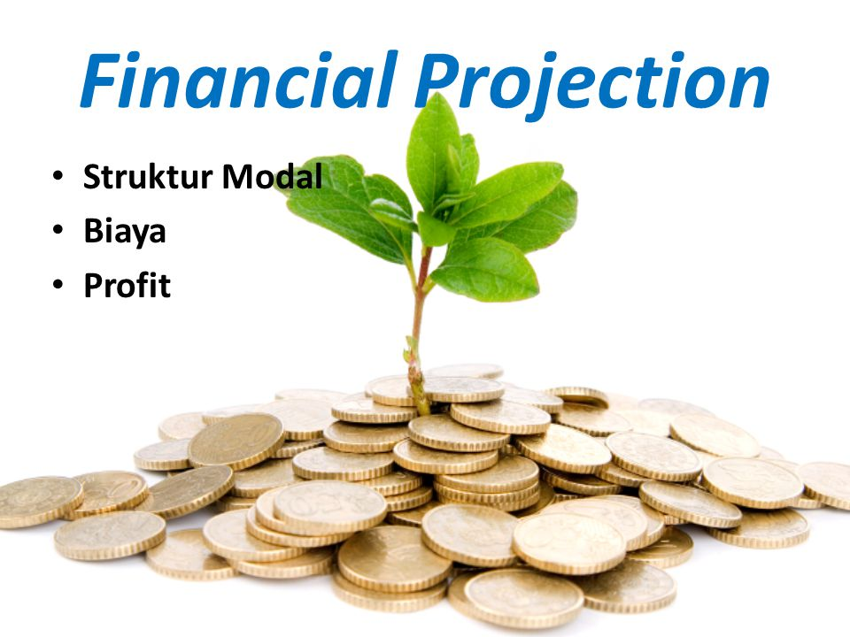 Financial Projection Struktur Modal Biaya Profit