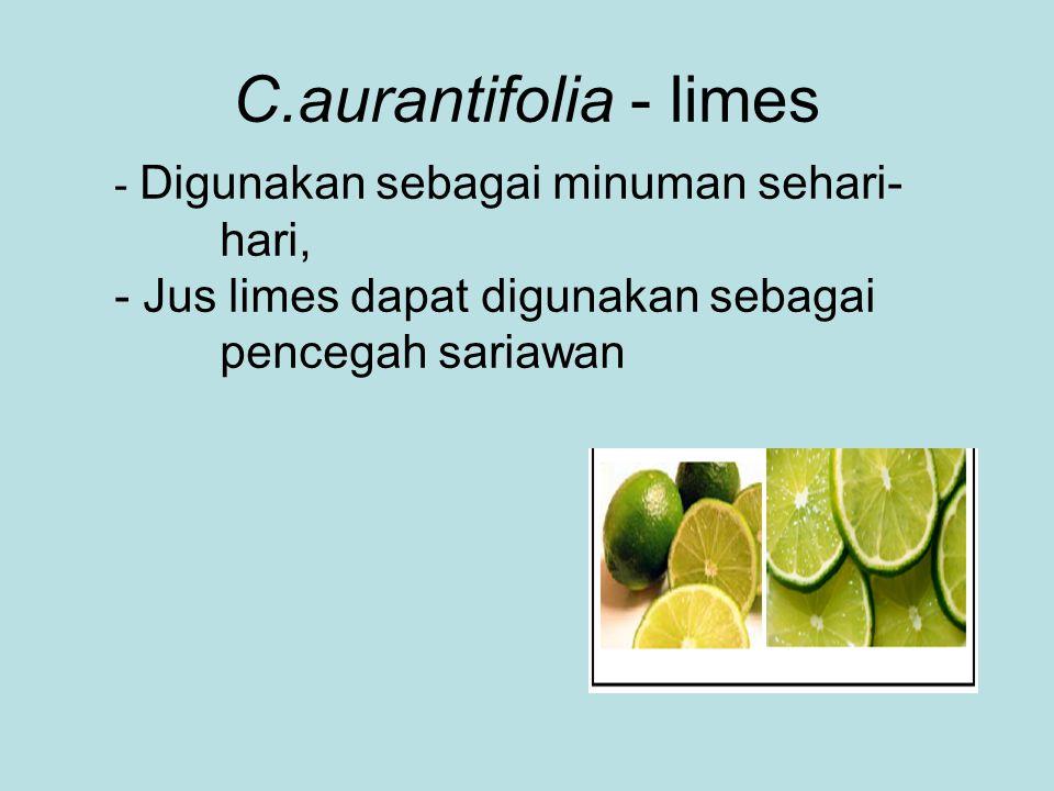 C.aurantifolia - limes - Digunakan sebagai minuman sehari- hari, - Jus limes dapat digunakan sebagai pencegah sariawan