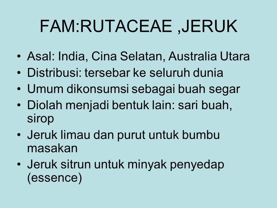 FAM:RUTACEAE,JERUK Asal: India, Cina Selatan, Australia Utara Distribusi: tersebar ke seluruh dunia Umum dikonsumsi sebagai buah segar Diolah menjadi