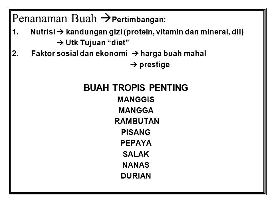 BOTANY BUAH TROPIS Taxonomy :  class: dicotyl dan monocotyl  Class, family, genus, species, cultivar/veriety.