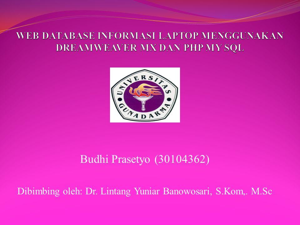 Budhi Prasetyo (30104362) Dibimbing oleh: Dr. Lintang Yuniar Banowosari, S.Kom,. M.Sc
