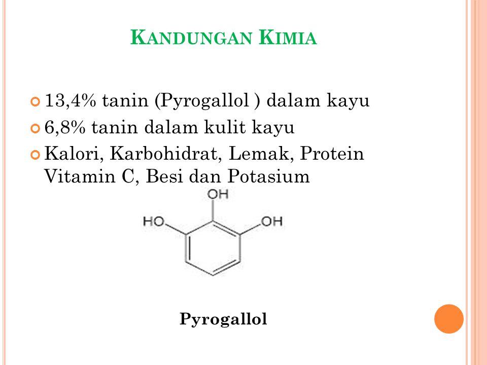 K ANDUNGAN K IMIA 13,4% tanin (Pyrogallol ) dalam kayu 6,8% tanin dalam kulit kayu Kalori, Karbohidrat, Lemak, Protein Vitamin C, Besi dan Potasium Py
