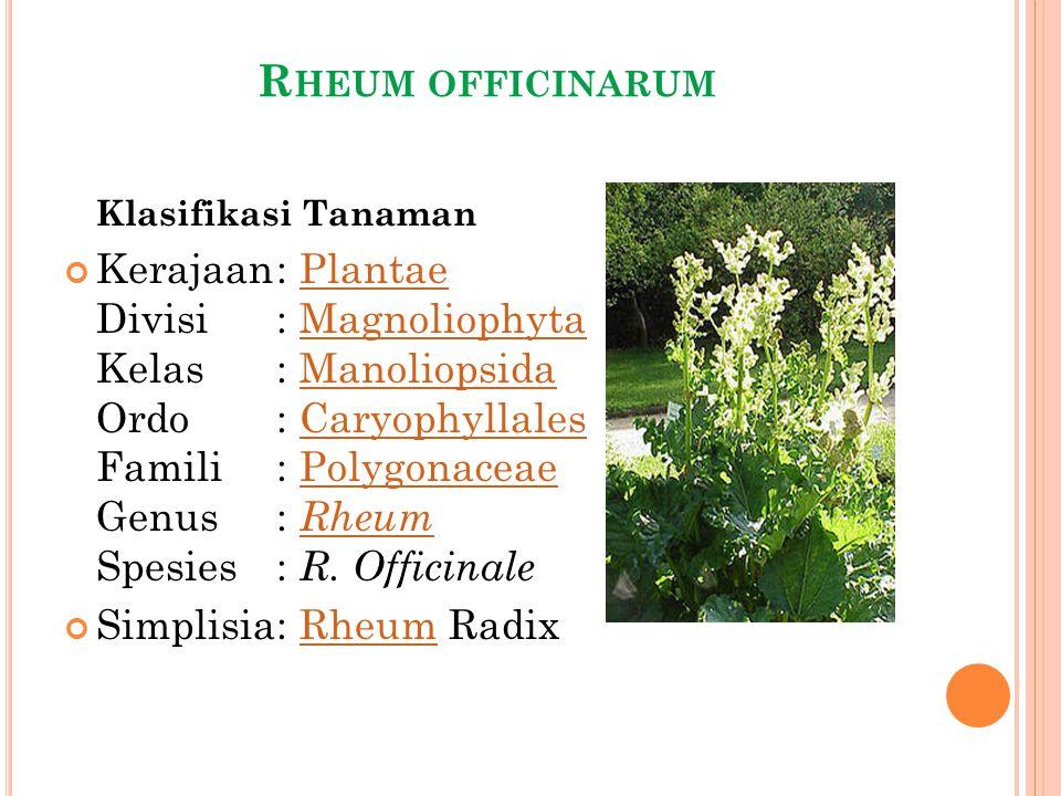 R HEUM OFFICINARUM Klasifikasi Tanaman Kerajaan: Plantae Divisi: Magnoliophyta Kelas: Manoliopsida Ordo: Caryophyllales Famili: Polygonaceae Genus: Rh