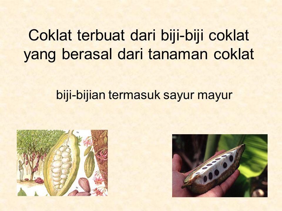 Coklat terbuat dari biji-biji coklat yang berasal dari tanaman coklat biji-bijian termasuk sayur mayur