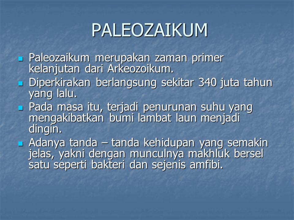 PALEOZAIKUM Paleozaikum merupakan zaman primer kelanjutan dari Arkeozoikum.